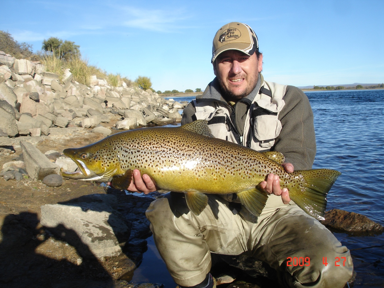 Brown trout faraway fly fishing for Fishing in argentina