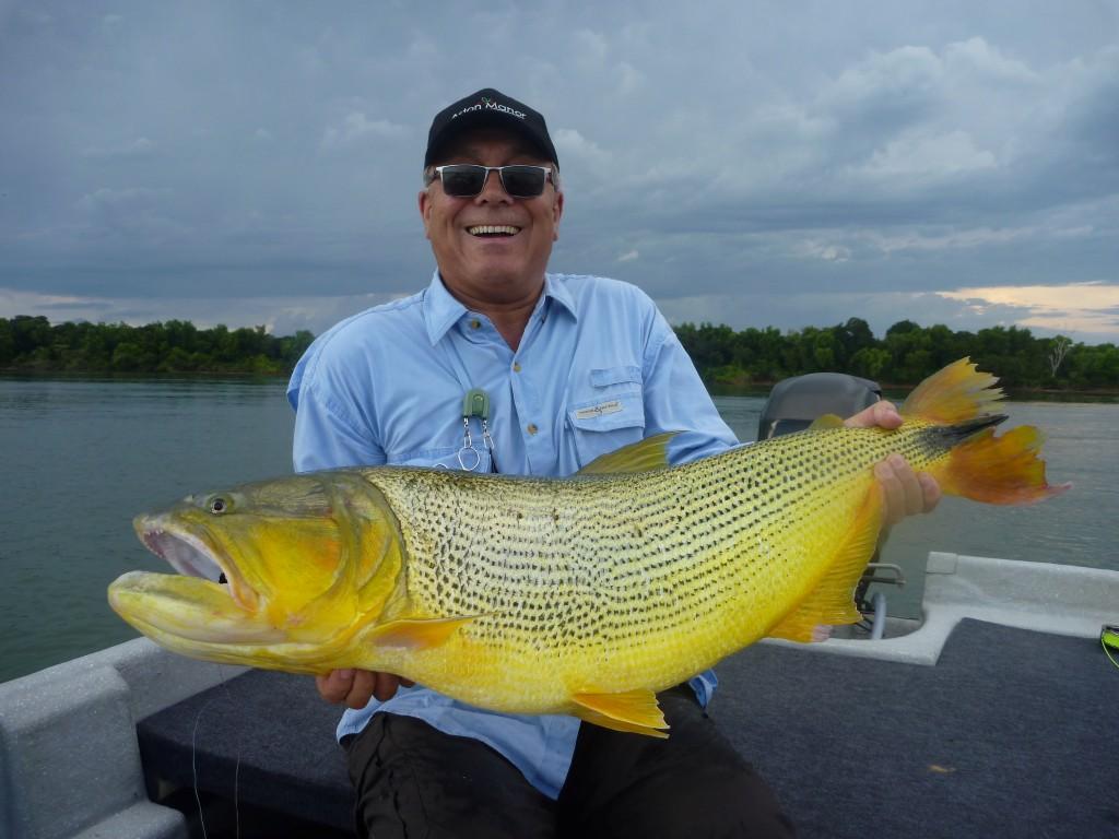 Monster dorado from parana river faraway fly fishing for Golden dorado fish